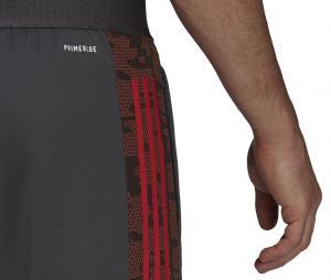Pantalon Entraînement Flamengo Graphic Gris