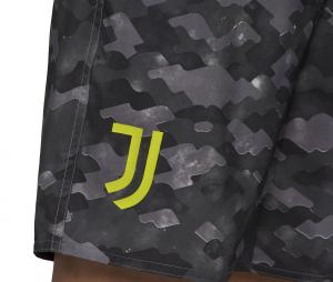 Short de bain Juventus Gris