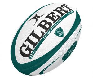 Ballon Gilbert Pau T.5 Blanc/Vert