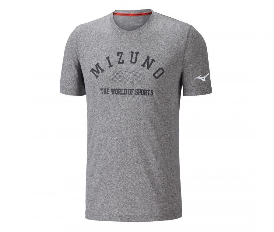 Tee-shirt Heritage 1906 gris